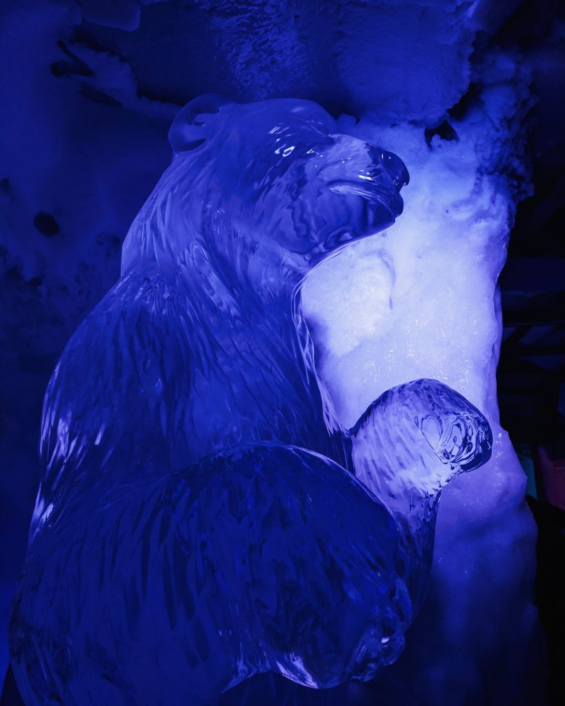 Ice Sculpture Polar Bear Ice Bar Amsterdam