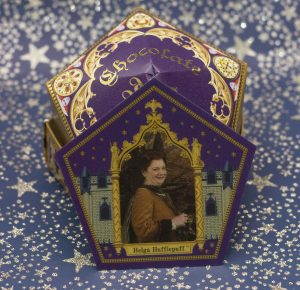 Harry Potter Studios Chocolate Frog Box